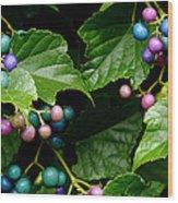 Porcelain Berries Wood Print