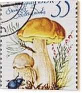 Porcini Mushroom Boletus Edulis Wood Print