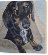 Dachshund Dog Wood Print
