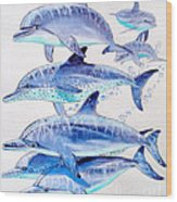 Porpoise Play Wood Print by Carey Chen