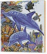 Porpoise Reef Wood Print