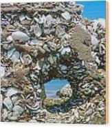 Port Hole Window Wood Print
