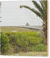 Port Lavaca Migratory Bird Stopover Wood Print