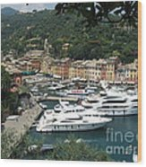 Port Of Portofino Wood Print