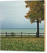 Port Sanilac Lookout, Michigan Wood Print