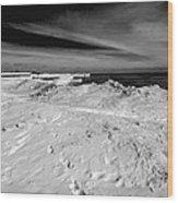 Port Washington - South Beach B-w  Wood Print