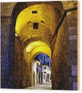 Porta Alfonsina Wood Print