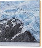 Portage Glacier Rretreat Wood Print