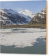 Portage Lake Panorama Wood Print
