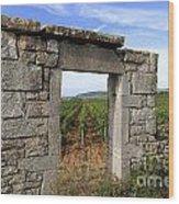 Portal Of Vineyard In Burgundy Near Beaune. Cote D'or. France. Europe Wood Print by Bernard Jaubert
