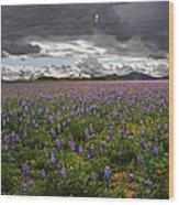 Porter Ranch Wildflowers   Wood Print
