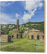 Porth Wen Brickworks V2 Wood Print
