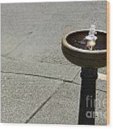 Portland Drinking Water Fountain Wood Print