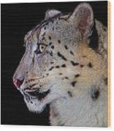 Portrait II Of A Snow Leopard Wood Print