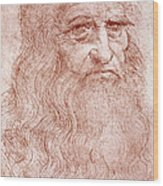 Portrait Of A Bearded Man Wood Print by Leonardo da Vinci