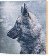 Portrait Of A Belgian Tervuren Wood Print