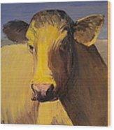 Portrait Of A Cow Wood Print