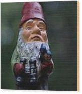 Portrait Of A Garden Gnome Wood Print