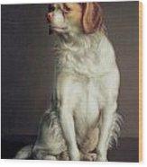 Portrait Of A King Charles Spaniel Wood Print