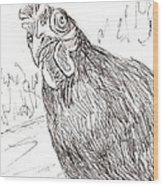 Portrait Of A Little Black Chicken Wood Print