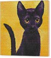 portrait of a small black cat named  LuLu Wood Print