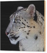 Portrait Of A Snow Leopard Wood Print
