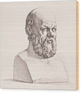 Portrait Of Socrates Wood Print by CC Perkins