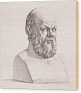 Portrait Of Socrates Wood Print