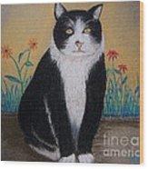Portrait Of Teddy The Ninja Cat Wood Print