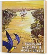Portugal Vintage Travel Poster Wood Print