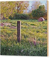 Post And Haybale Wood Print by Tracy Salava