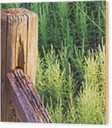 Post And Rail At Sunset Wood Print