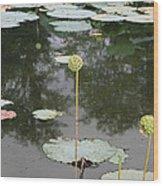 Post Bloom Wood Print