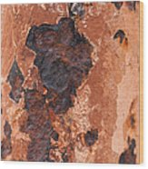 Post In Decay  Wood Print