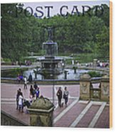 Postcard From Central Park Wood Print