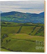 Postcard From Ecuador... Wood Print