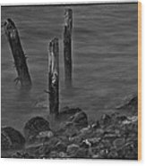 Posts In The Water Wood Print