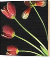 Pot Of Tulips Wood Print