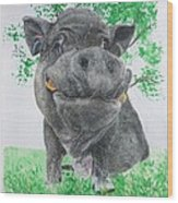 Potbellied Pig Pet Portraits Watercolor Memorial Made To Order 5x7 Inch Wood Print