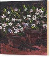 Pots Of Flowers Wood Print