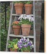 Potted Flower On Ladder Wood Print