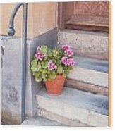 Potted Plant Front Of House Wood Print