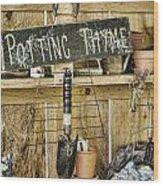 Potting Thyme Wood Print
