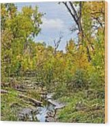 Poudre Walk-2 Wood Print by Baywest Imaging