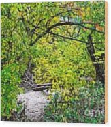 Poudre Walk Wood Print by Baywest Imaging
