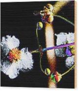 Powder Flower Wood Print