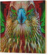 Power Hawk 1 Wood Print by Colleen Cannon