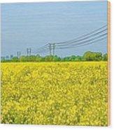 Power Lines In Innsworth Wood Print