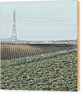 Powerlines And Plowed Fields Wood Print