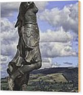 Powis Castle Statuary Wood Print
